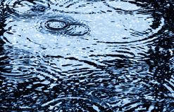 Baisse de pluie Photographie stock libre de droits