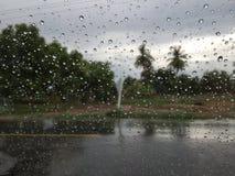 Baisse de pluie sur un verre Photographie stock libre de droits