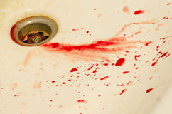 Baisses d'évier souillé de sang Image stock