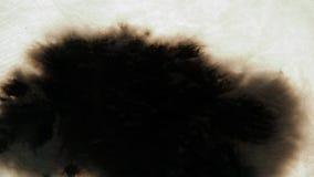 Baisses d'encre sur le papier texturisé blanc Baisses à l'encre noire de égouttement remplissant écran entier Écoulement organiqu clips vidéos