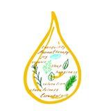 Baisses d'huile essentielle illustration stock