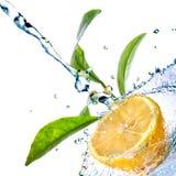 Baisses de l'eau sur le citron avec les lames vertes Images libres de droits