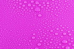 Baisses de l'eau sur le rose Images libres de droits