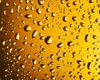 Baisses de l'eau sur un verre de bière Images libres de droits
