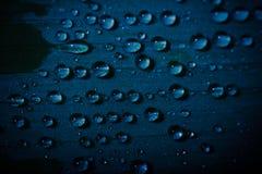 Baisses de l'eau sur une feuille Image stock