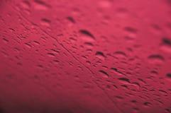 Baisses de pluie Image libre de droits