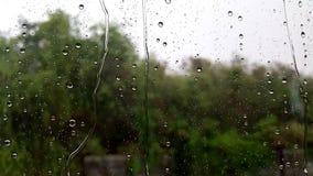 Baisses de pluie sur l'hublot Images libres de droits