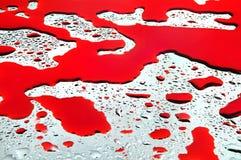 Baisses et sang de l'eau Photo libre de droits