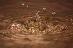 Baisses parfaites de l'eau de pluie Photographie stock
