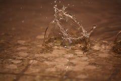 Baisses parfaites de l'eau de pluie Photos libres de droits