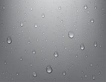 Baisses pures réalistes de l'eau sur le fond d'isolement Condensation de douche de vapeur sur la surface verticale Illustration d Photographie stock