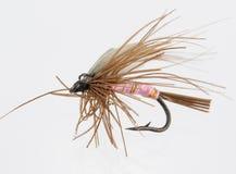 The bait. Flyfishing isolated royalty free stock image
