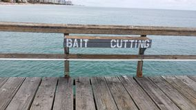 Bait Cut Royalty Free Stock Photo