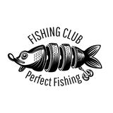 Bait fish on white in engraving style. Logo for fishing or fishing shop on white.  vector illustration