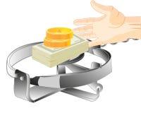 Bait money in trap Stock Photos