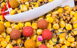 Bait rocket carp fishing. The method of feeding angling baits. Bait rocket carp fishing. Carp anglers seeking to prebait effectively. This Bait Rocket can be royalty free stock photography