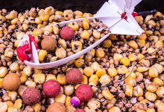 Bait rocket carp fishing. The method of feeding angling baits. Bait rocket carp fishing. Carp anglers seeking to prebait effectively. This Bait Rocket can be stock images