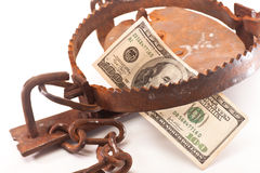 Bait. $ 100 in a steel trap with chain on white background Stock Images