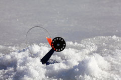 Bait for winter fishing winter Royalty Free Stock Photography