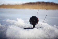 Bait for winter fishing winter Stock Photography
