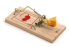Baited Mousetrap. Mousetrap baited with cheese on a white background Royalty Free Stock Image