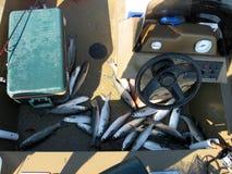 Baitfish op de bodem van John boot in Charleston South Carolina Stock Afbeelding