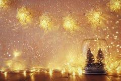Baixa chave e imagem filtrada vintage de árvores de Natal no frasco de pedreiro com luzes da festão e a folha de prova mornas do  Fotos de Stock