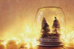 Baixa chave e imagem filtrada vintage de árvores de Natal no frasco de pedreiro com luzes da festão e a folha de prova mornas do  Fotos de Stock Royalty Free