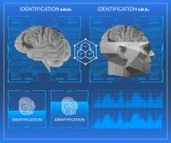 baixa exploração poli do cérebro 3D, interface de utilizador gráfica virtual médica do toque de HUD, cérebro que faz a varredura  Imagem de Stock