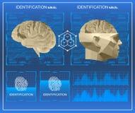 baixa exploração poli do cérebro 3D, interface de utilizador gráfica virtual médica do toque de HUD, cérebro que faz a varredura  Imagens de Stock Royalty Free