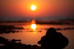 Baixa maré da manhã Imagens de Stock Royalty Free