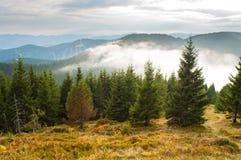 Baixas nuvens brancas abaixo das partes superiores da montanha imagens de stock