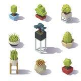 Baixas plantas polis isométricas Fotografia de Stock Royalty Free