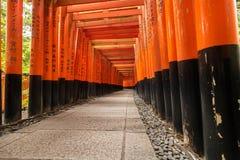Baixo ângulo de Fushimi Inari Taisha nenhuns povos, passagem vermelha da porta, Kyoto Japão Fotos de Stock