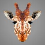 Baixo retrato poli do girafa Imagens de Stock