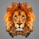 Baixo retrato poli do leão Fotografia de Stock Royalty Free