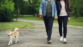 Baixo tiro do movimento lento dos jovens ativos que andam no parque com o cão obediente bonito que aprecia a caminhada e a liberd vídeos de arquivo