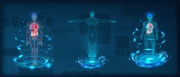 Baixo wireframe poli do corpo humano ilustração stock