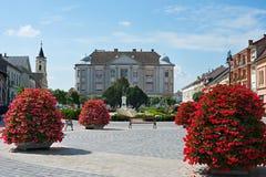 Baj, Węgry obrazy royalty free