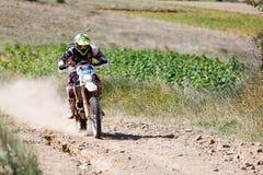 Baja Aragonien 2014 Stockfotos