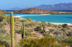 Baja Californië Royalty-vrije Stock Afbeeldingen