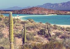 Baja California Imagen de archivo libre de regalías