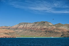 Baja California strand Arkivfoton