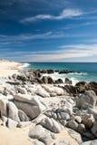 Baja Coast Stock Photos