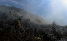 Baja temperatura paisaje de s del acantilado ' Fotografía de archivo libre de regalías
