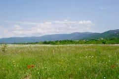 Весна в долине Bajdarsky, Крыме Стоковое Изображение RF