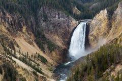 Baje las caídas de Yellowstone Imágenes de archivo libres de regalías