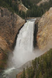 Baje las caídas el río Yellowstone Fotografía de archivo libre de regalías
