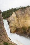 Baje las caídas en Yellowstone Imagen de archivo