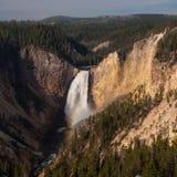 Baje las caídas Yellowstone Imagen de archivo libre de regalías